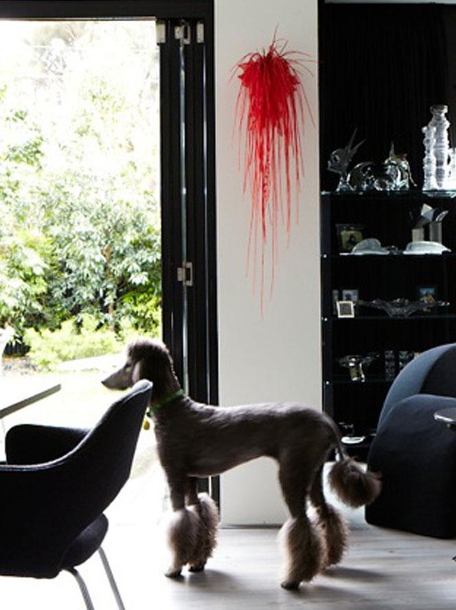 Interior designers Footscray